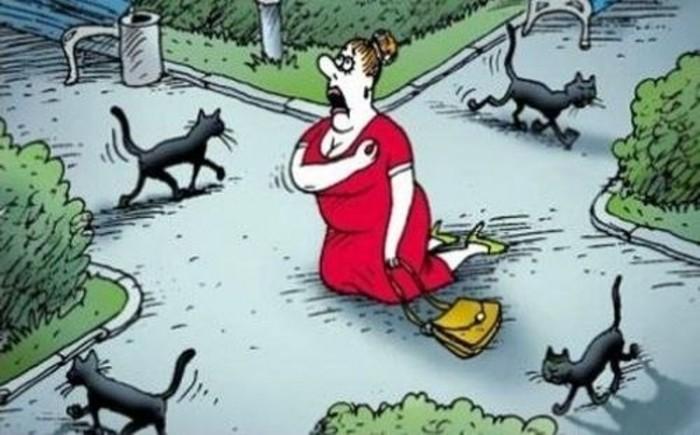 Чёрная кошка примета