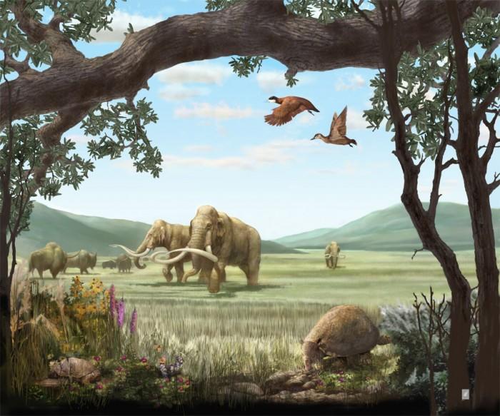 кайнозойская эра животные и растения фото водила туда маленького